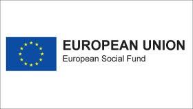 Image result for eu european social fund
